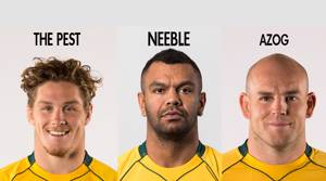 The ACC's official Wallabies team nicknames for the 2nd Bledisloe Cup Test