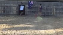 Watch this Aussie BYC battler mow through a fence to complete the quick single