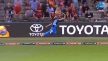 Here's one of the greatest catches you'll ever see!